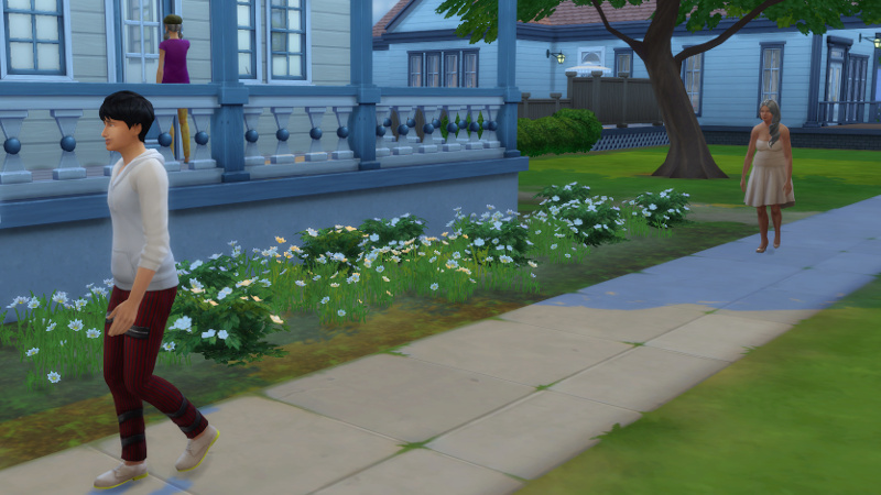 Liberty Lee knocks on the front door; Julian and Tabitha Duff walk up on the footpath