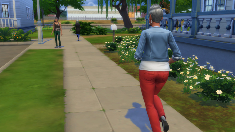 Stacey chases a passerby (an elderly woman) towards the canal