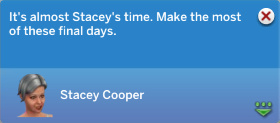 It's almost Stacey's time. Make the most of these final days.