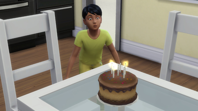 Abed blows out the candles on a chocolate cake